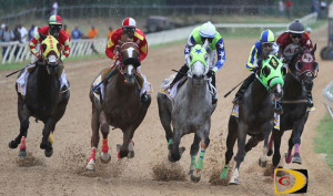 Horses in the 1st leg of the VI Triple Crown, prepare to navigate the 1st turn in the 1-1/16 mile race at the Ellis Thomas Downs. L-R: St. Croix's St. Moose, left, Chilean Boy, Still Unbroken, Trading Secrets and  Swag Daddy