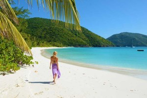 guana-island-white-bay-beach
