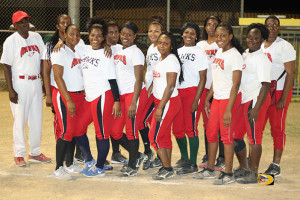 The Hawks came up short of handing the Pythons their first loss in the BVI Softball Association league since 2011, and were swept in the 2015 Championship series